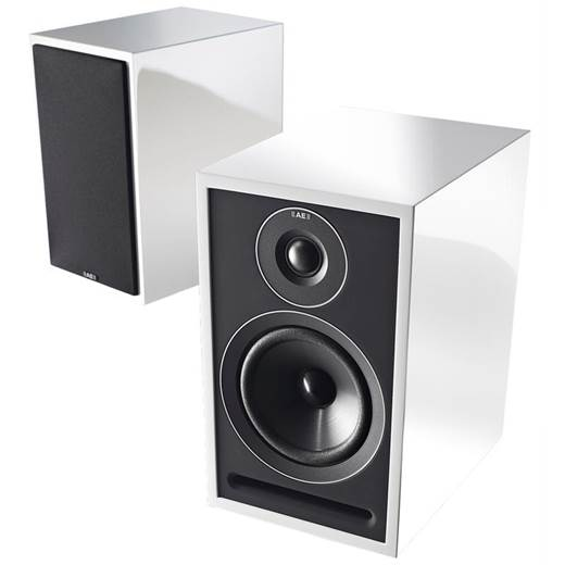Acoustic Energy 301 Loudspeaker