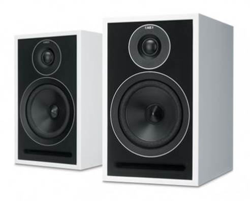 The 301s are terrific speakers and the most competitive Acoustic Energy speakers we've heard in years