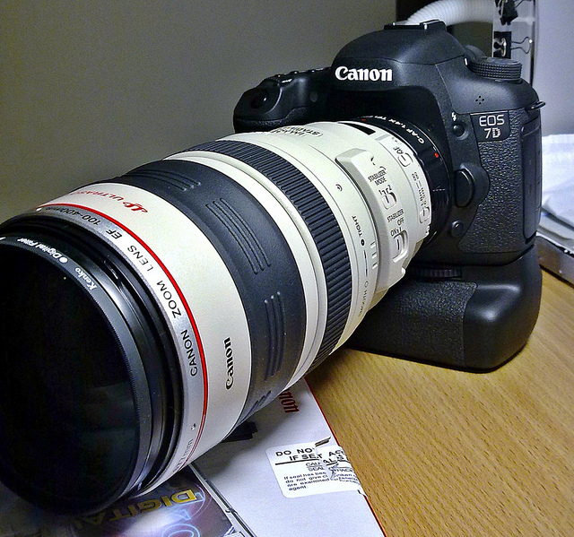 I rented a lens for the hummingbirds, and that went so well, I called my local camera shop and reserved the amazing Canon EF 100- 400mm lens for a week