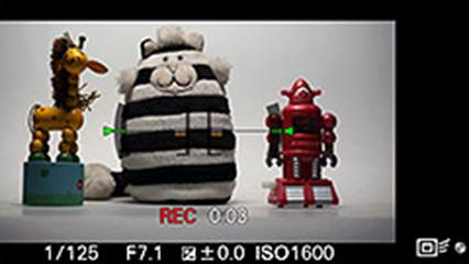 Description: The default view when recording movies is cut off, leaving wide margins around the region being recorded. Exposure parameters and a timer are displayed.