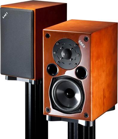 Description: Acoustic Energy's AE1